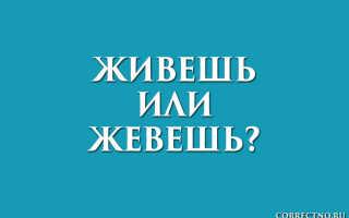 Живешь или жевешь?