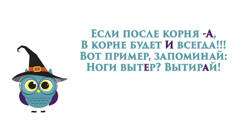Изображение совы с текстом