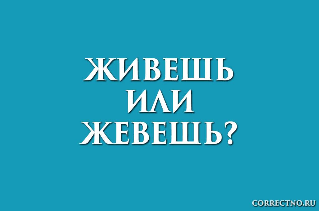 надпись: живешь или жевешь?
