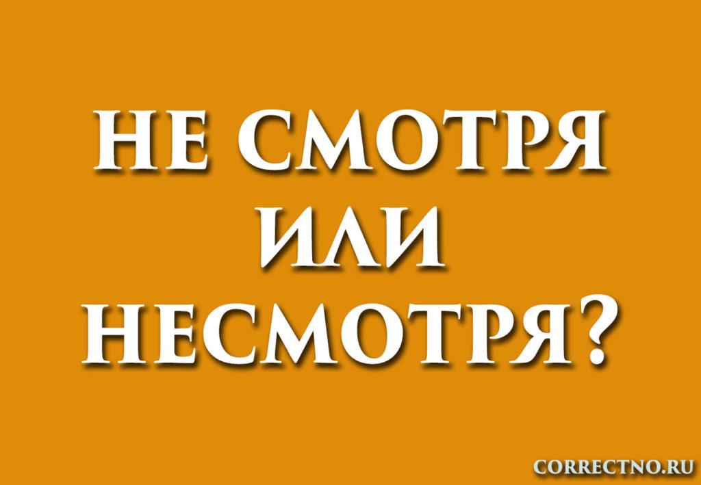 надпись: несмотря или не смотря