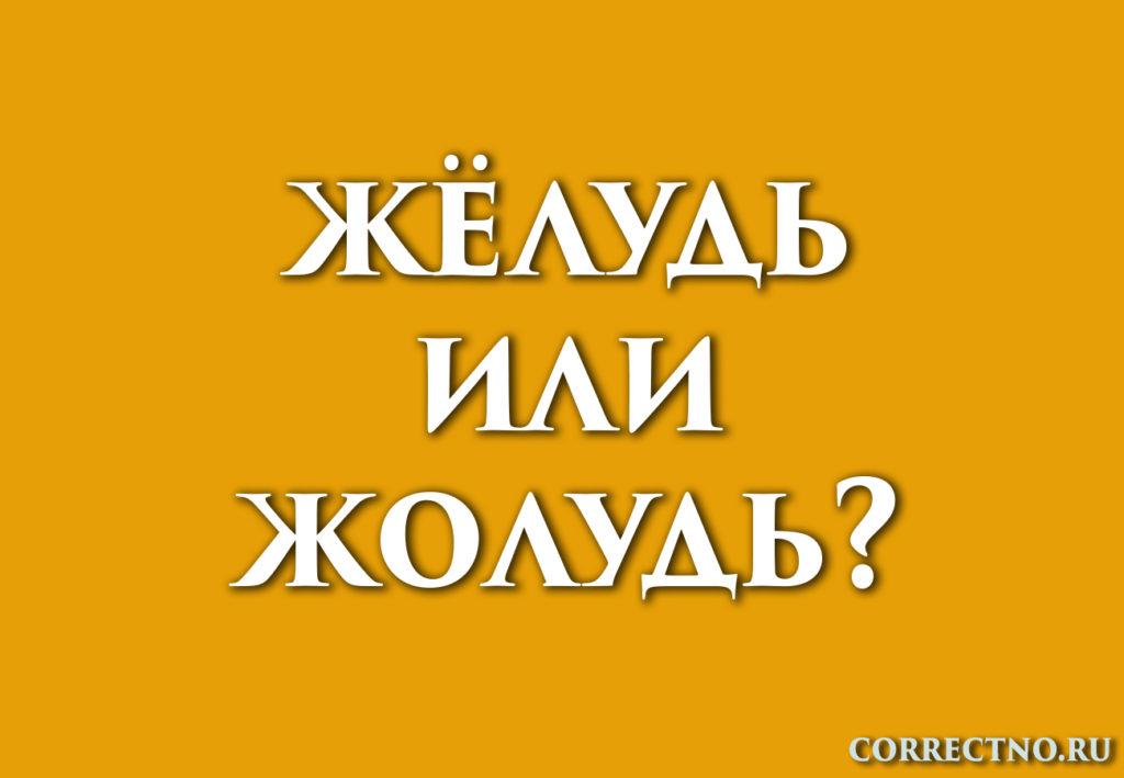 Надпись: жёлудь или жолудь?