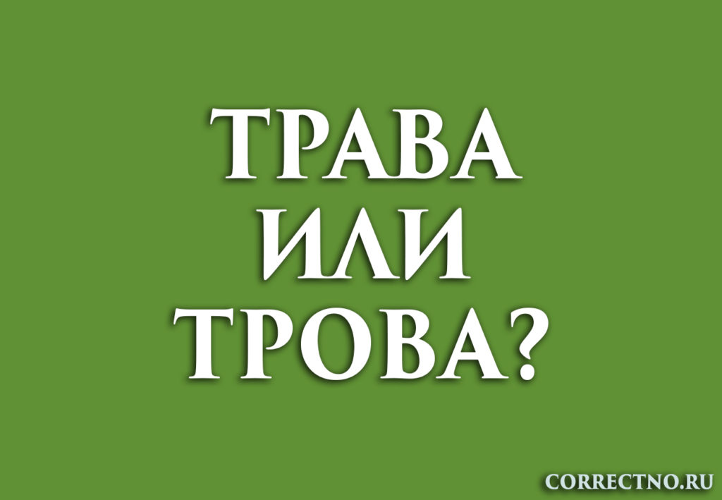 Надпись: трава или трова?