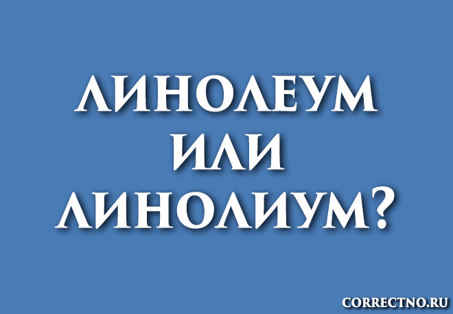 Линолеум или. линолиум: как правильно пишется слово?