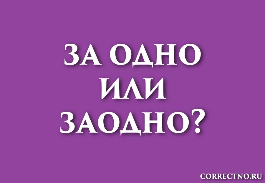 Заодно или за одно: как правильно пишется слово?